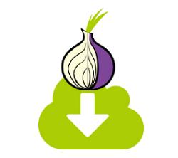 Apa Itu Tor? Dan Bagaimana Cara Kerjanya?